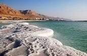 ים המלח-החוף