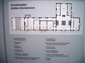 Dachau Lay out