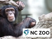 4/15/16 NC Zoo Outing in Asheboro (Regions 2, 3, 4 and 5)