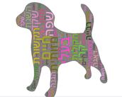 שפתם של בעלי החיים