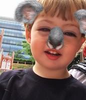 Finley the Koala