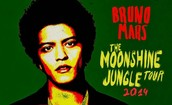 El verano pasodo, fui al concierto de Bruno Mars.