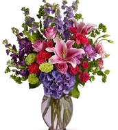 Available Flowers during this season