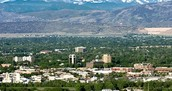 The fort collins