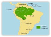 Map of the Amazon Rainforest