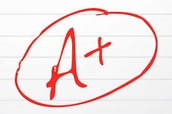 Grading Procedures - Late Assignments/Late Work