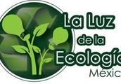 Reciclaje en Mexico