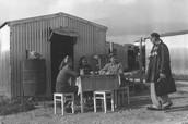 אחרי העלייה לארץ ישראל... ילדות, בגרות ולאחר סיום הלמודים