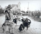 Seppala gets dogs ready for race