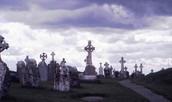 Family deaths