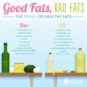 What is the role/function of fat in the body?