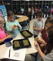 Tower Garden Plantings