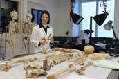 Forensic Pathologist