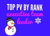 Top Sales by Rank - Executive Team Leaders