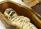 Finest Coffins