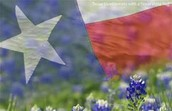Early Settlers to Texas