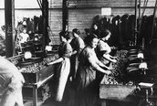 women employed in hotels, factories