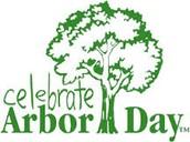 Kindergarten celebrated Arbor Day