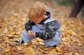 Counting Fall Leaves at Home!