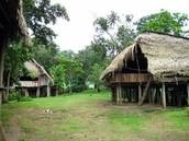 Panama jungle houses
