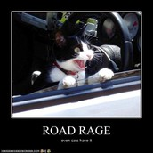 66% of traffic fatalities are caused by aggressive driving.