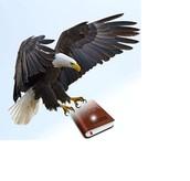 Skyview Skyhawks eMazing Creators of eBooks