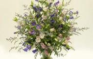 Campanula Bouquet $49.95