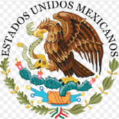 Mexico's  government