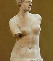 Venus calipias