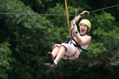 Zip line the length of the rain forest!