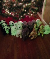 Donating Christmas Stuffed Animals in Honor of the Shipley Teahers