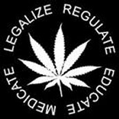 What is Marijuana/Pot/Hemp/Weed/Ganja?