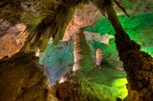 Come see the wonders of the Carlsbad Caverns
