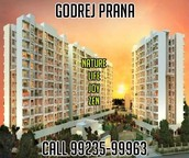 Pune World Class Godrej Prana Amenities