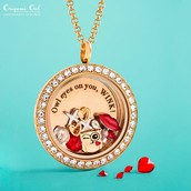 Locket, chains, plates and charms