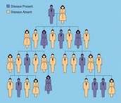 Heredity Picture