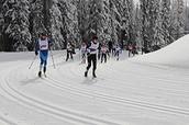 CVU Nordic Ski Team's annual online auction