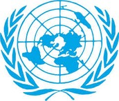 ¿Qué es la ONU y donde se encuentra su sede?