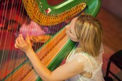 Vibrant music to make the spirit fly! Harp, strings and wind in an unforgettable one hour show