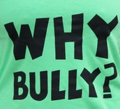 why would you bully?