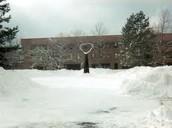 a pretty snowday