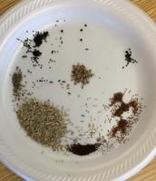 Seed Study