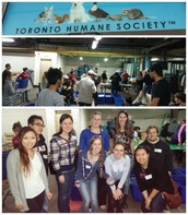 @TorontoRotaract Volunteers at the Humane Society