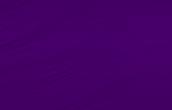 Violet/Violette