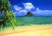 This is a beach
