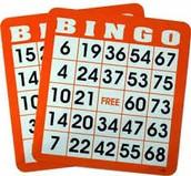 Bingo Help Needed - Spots Available