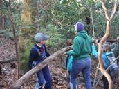 Teamwork: Building a shelter