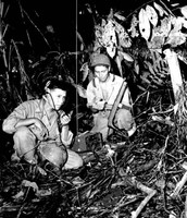 Code Talkers in Action