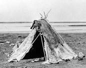 Summer tents