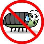 Rid yourself of pests and deter critters